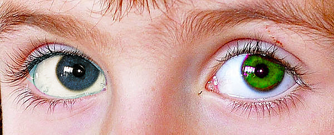 Beautiful human eyes